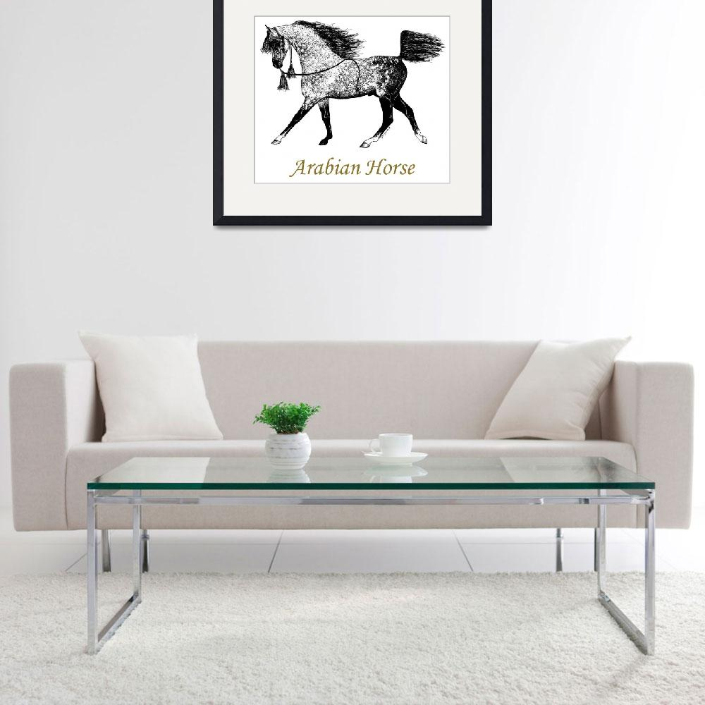 """Arabian Horse Drawing&quot  (1988) by evansonart"
