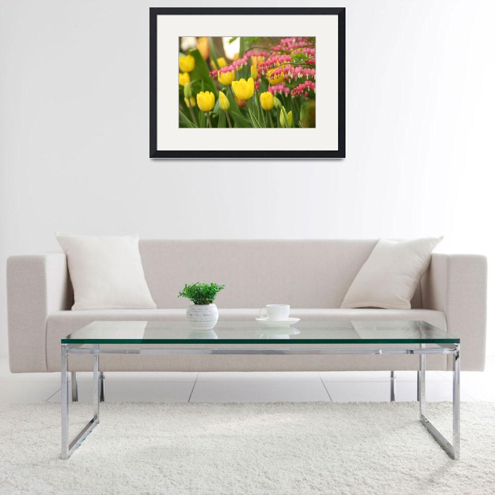 """Yellow Tulips and Bleeding Hearts&quot  by AndreaMoorePhotography"