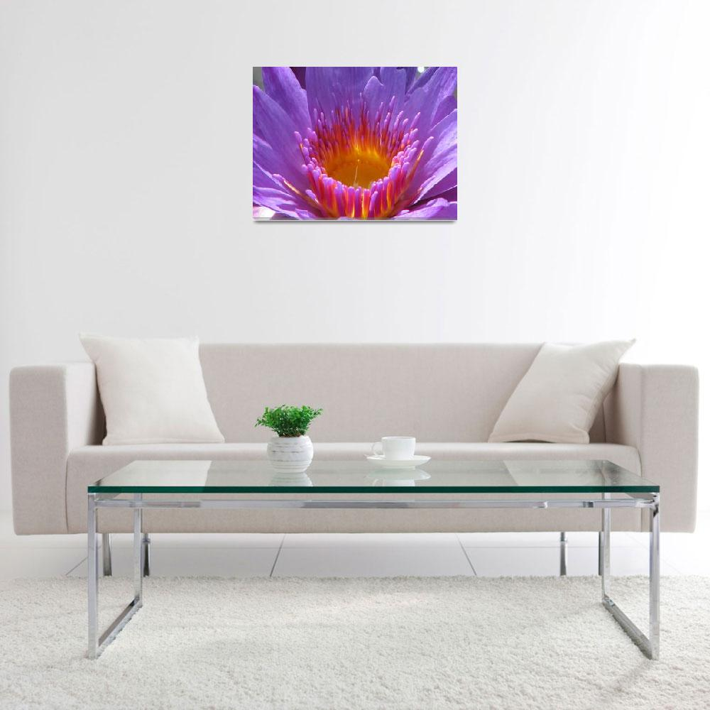 """Lotus at Biltmore&quot  (2009) by srzimmartist"