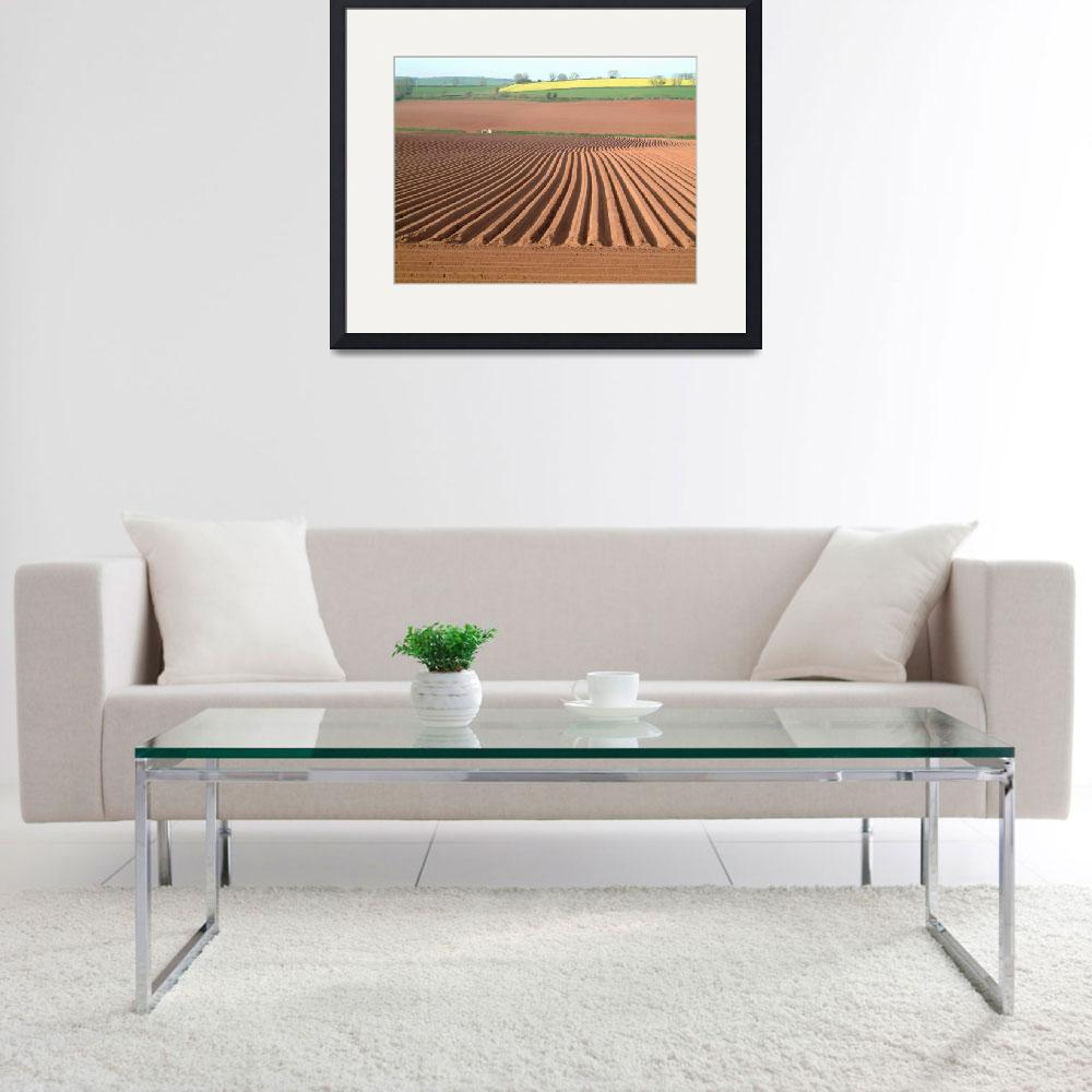 """Red Soil Furrows&quot  by Mikey"