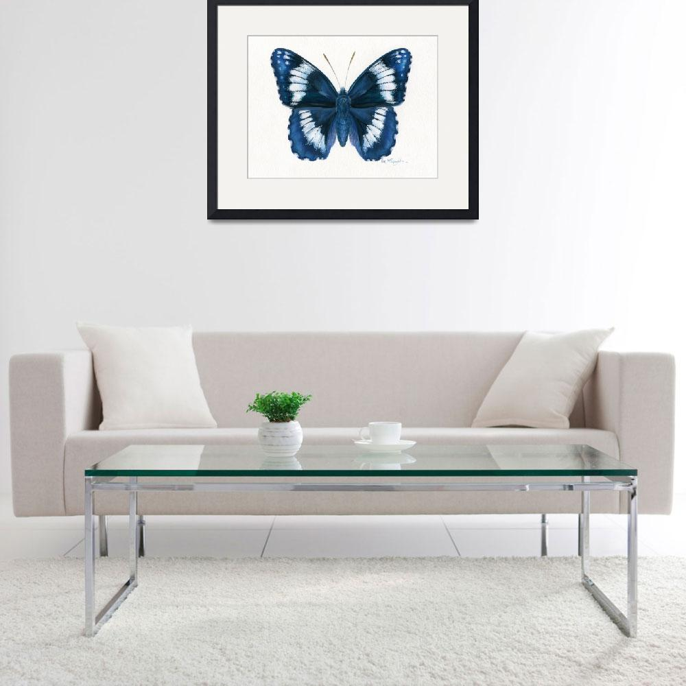 """Western Admiral butterfly&quot  (2008) by LisaMclaughlin"
