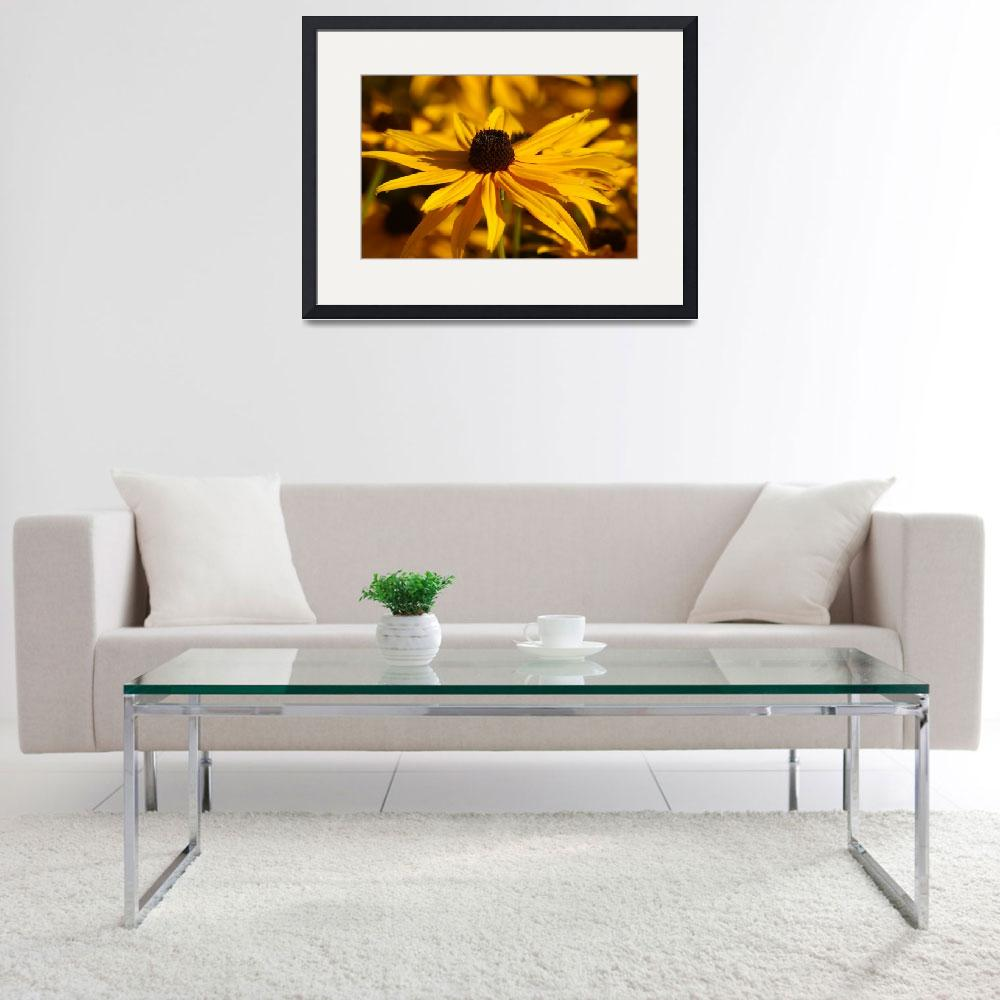 """Black-eyed Susan&quot  (2009) by mellting"