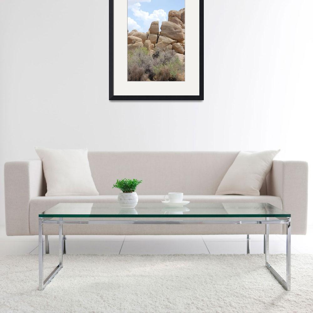 """Rock of Joshua Tree National Park&quot  (2006) by darrenmiller"