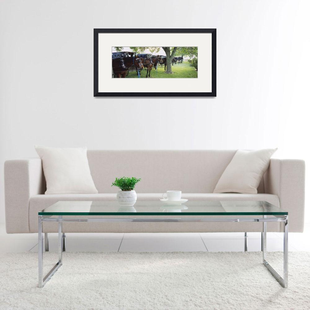 """Amish buggies and horses parked at a farm&quot  by Panoramic_Images"