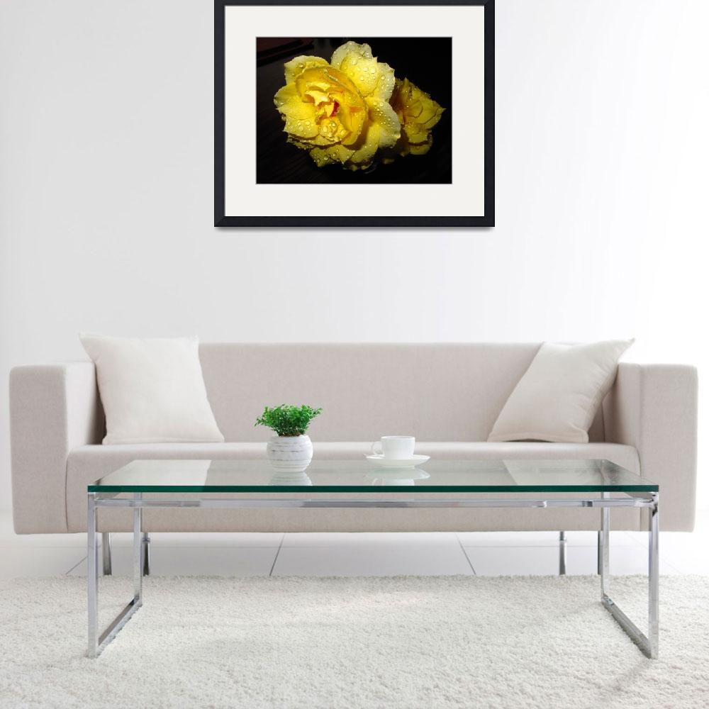 """Rain Soaked Yellow Rose&quot  (2010) by JoyceDickens"