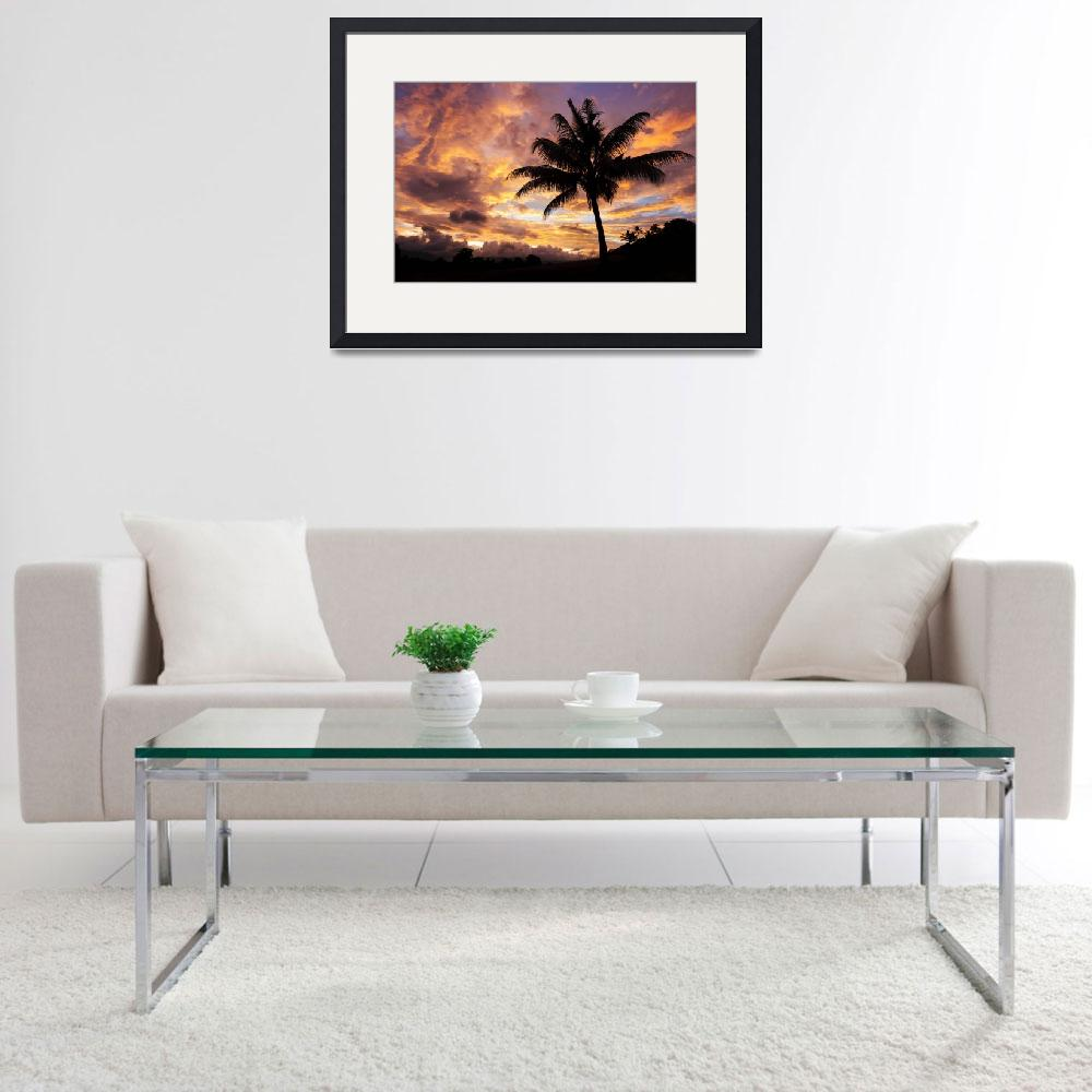 """Fiji, Coconut Palm Tree Silhouetted Against A Fier&quot  by DesignPics"