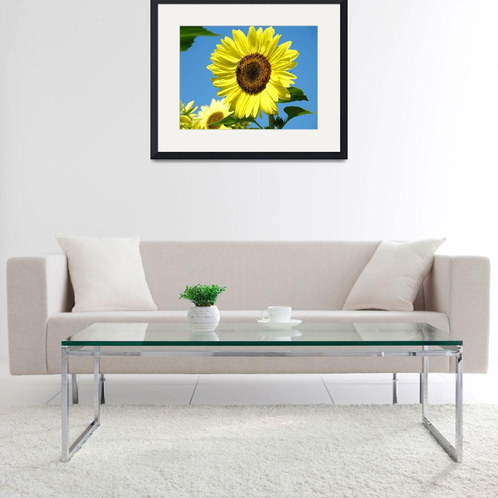 """CHRISTMAS GIFTS Sun Flower Art Prints Baslee&quot  (2009) by BasleeTroutman"