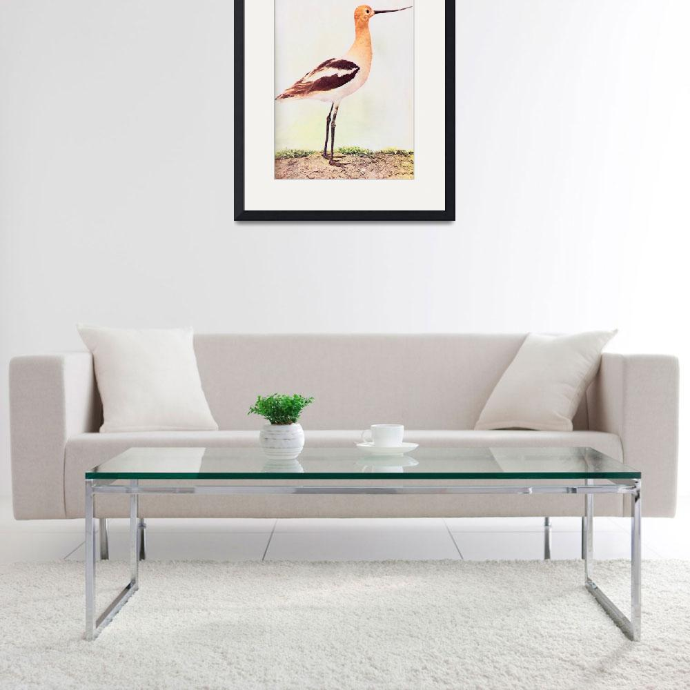 """Avocet&quot  (2010) by birthdaygifts"