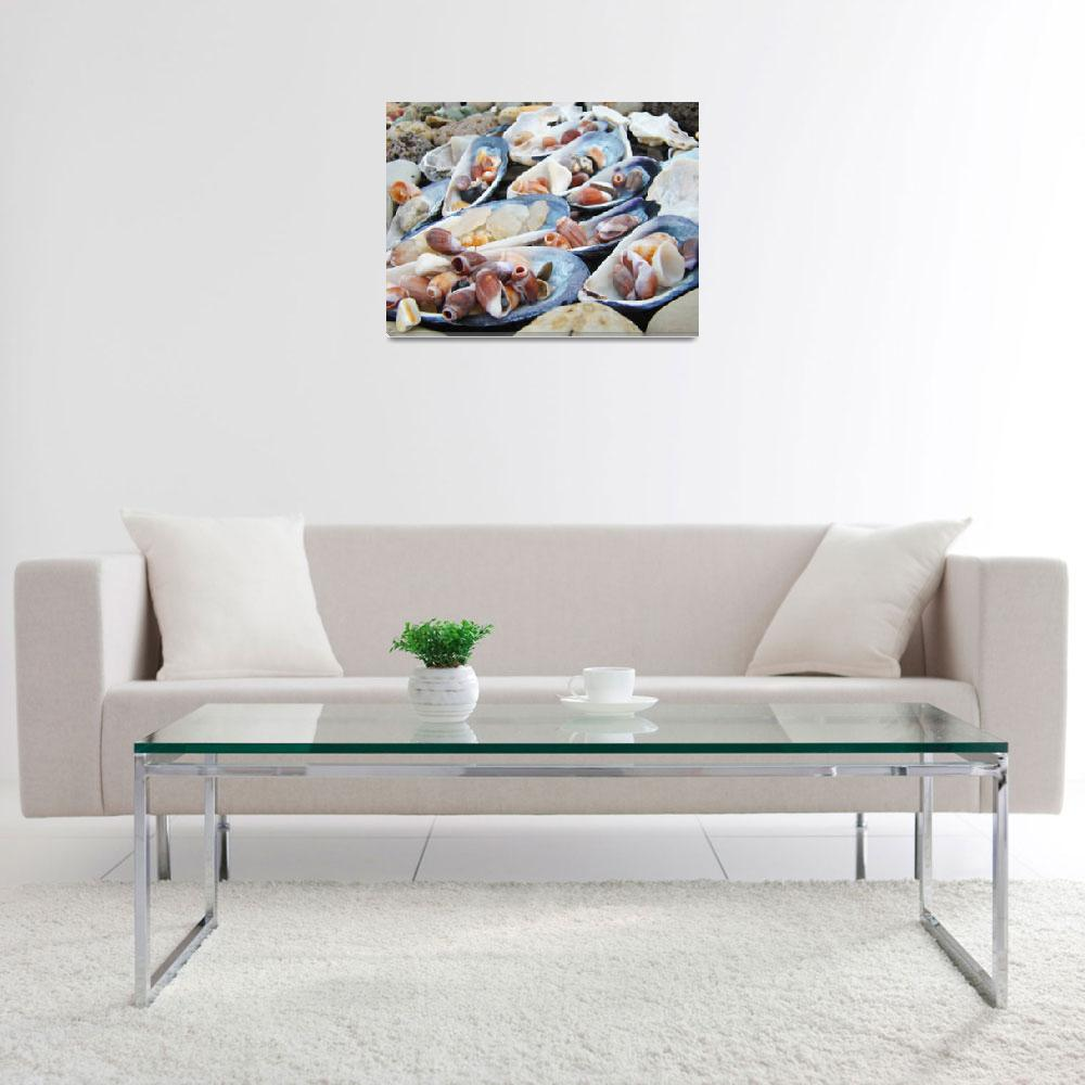 """Sea Shells art prints Coastal Beach Decorative&quot  (2013) by BasleeTroutman"