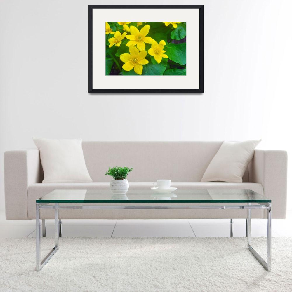 """Marsh Marigolds&quot  (2011) by LJdesigns"