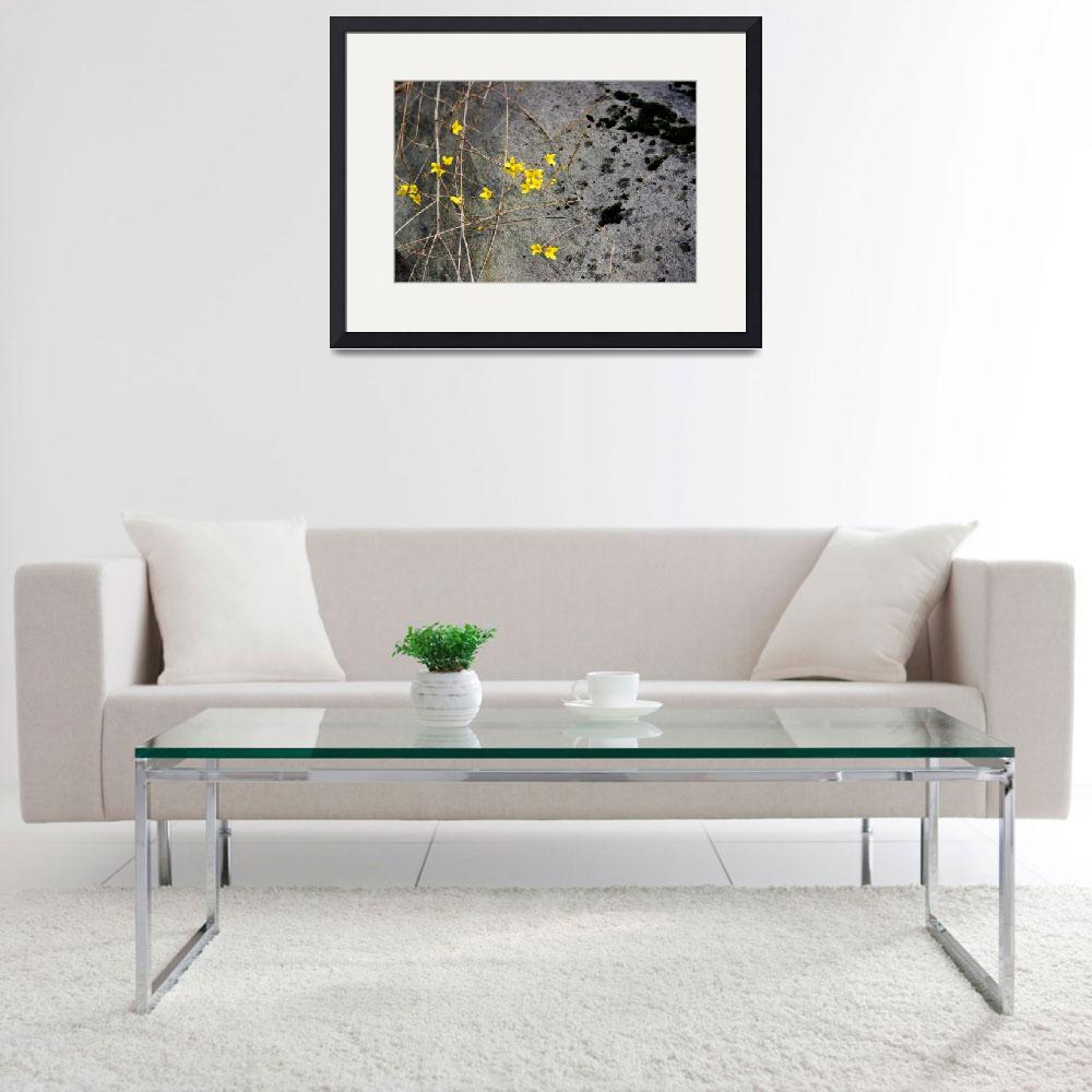 """Forsythia and Rock&quot  (2016) by KsWorldArt"