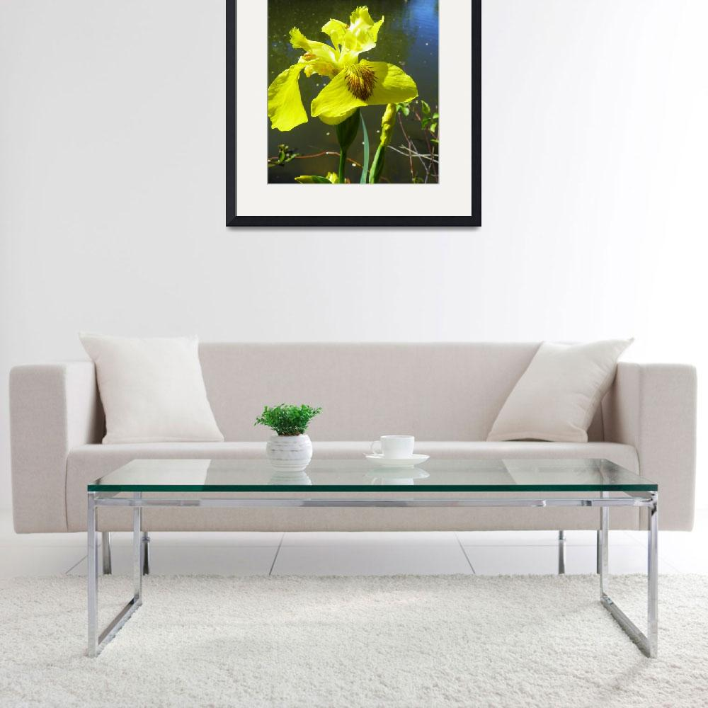 """Botanical - Wild Iris - Outdoors Floral&quot  by artsandi"