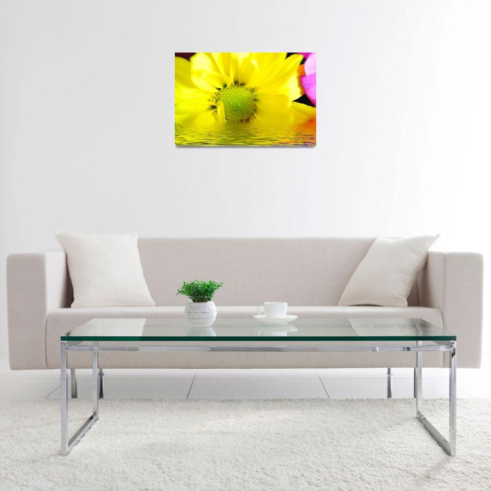 """Sunrise Yellow Daisy&quot  by bloomingvinedesign"