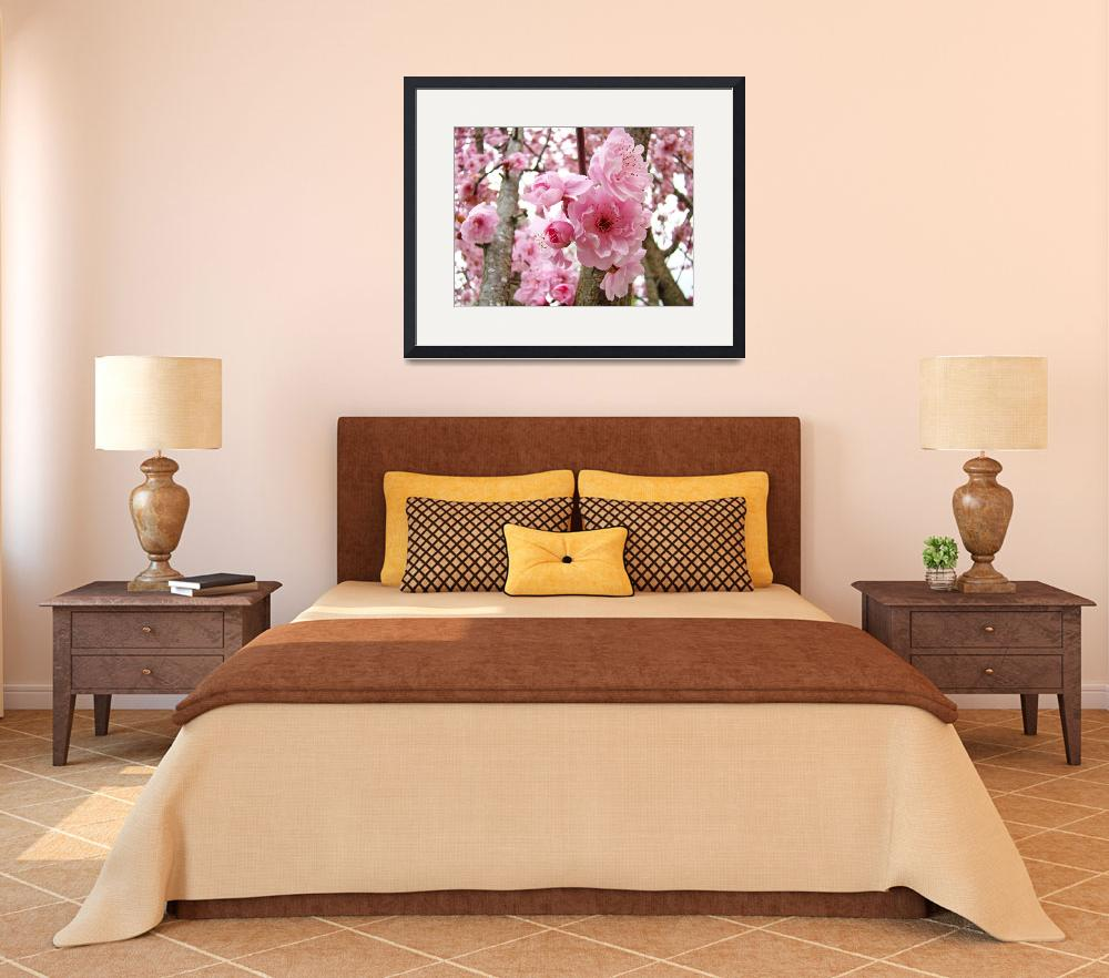 """BLOSSOMS PINK TREE Blossoms Flower Art Prints&quot  (2009) by BasleeTroutman"