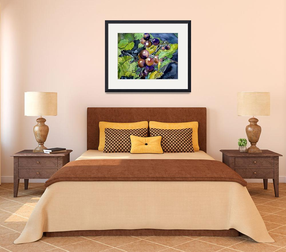 """grape vine fruit still life&quot  (2008) by derekmccrea"