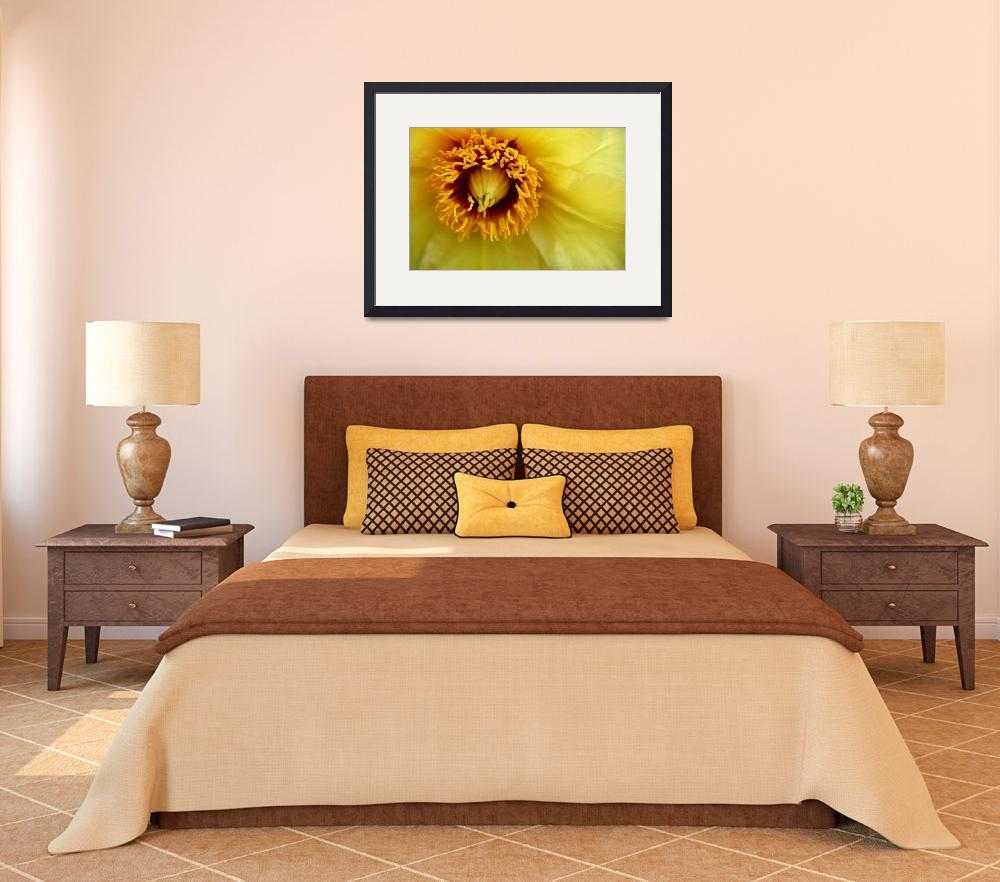 """Yellow Clematis&quot  (2010) by BranchDesign"