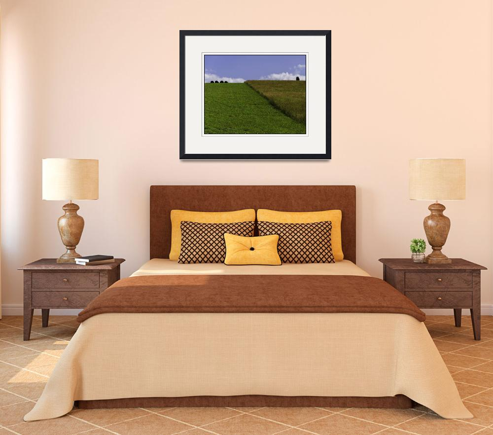 """Pennsylvania Cut Hilltop Field Landscape&quot  (2012) by CuriousEye"