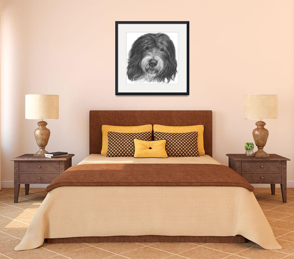 """Quincy, Old English Sheepdog&quot  (2008) by sdonley"