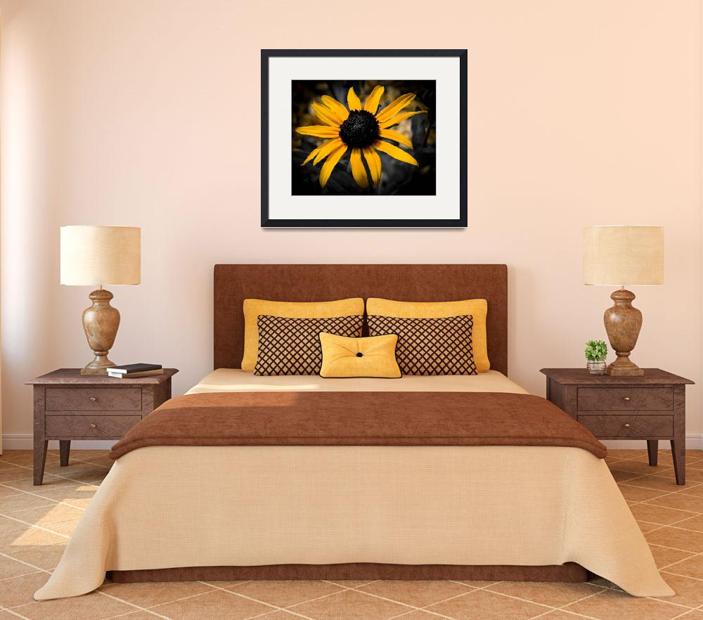 """Black Eyed Susan&quot  (2012) by NCCreations"