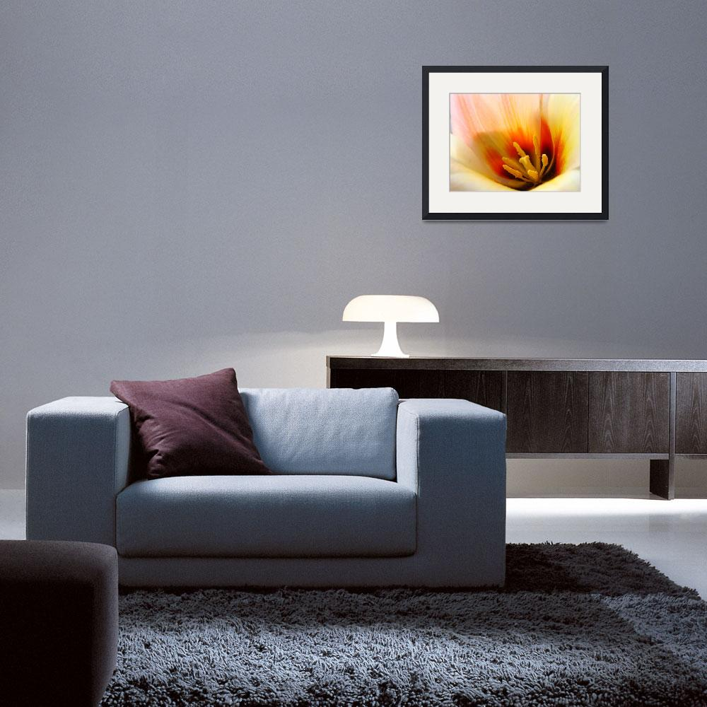 """OFFICE ART Prints TULIP Flower Baslee Troutman&quot  (2009) by BasleeTroutman"