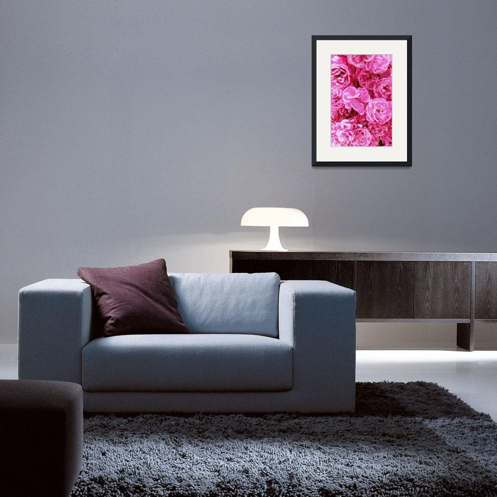 """Canvas of Pink Roses - Digital Art&quot  by Groecar"