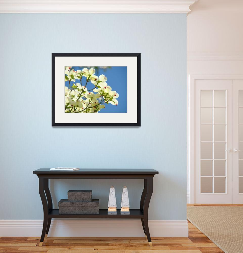 """CHRISTMAS White Dogwood Flowers Art Gifts&quot  (2009) by BasleeTroutman"