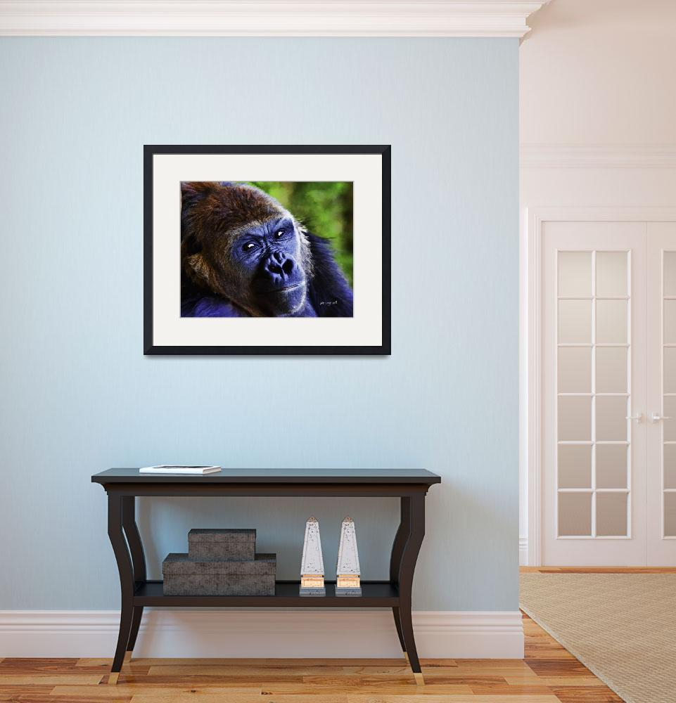 """Gorilla Portrait #1&quot  (2009) by johncorney"