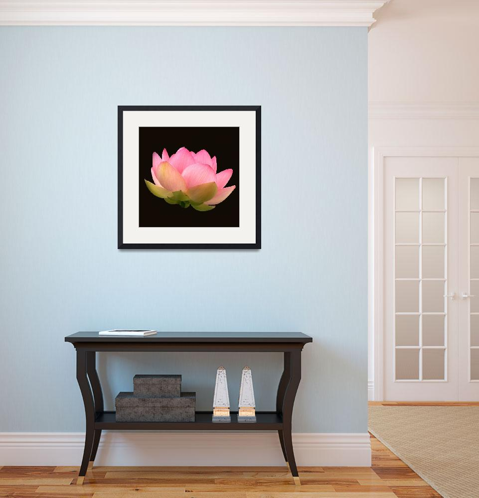 """Glowing Lotus Blossom&quot  (2012) by LightHeart"