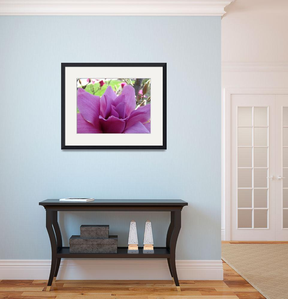 """Magnolia Flower Pink Art Spring Magnolia Tree&quot  by BasleeTroutman"