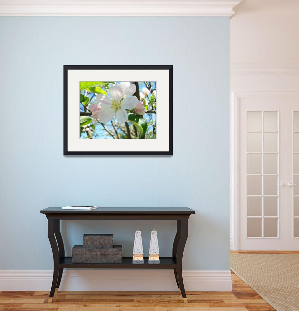 """Spring Apple Tree Blossoms Flower Art Prints&quot  (2014) by BasleeTroutman"