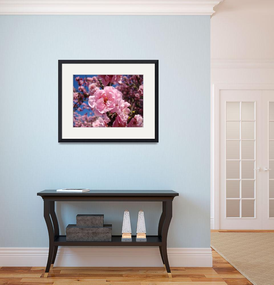 """Pink Tree Spring Blossoms art prints&quot  (2011) by BasleeTroutman"