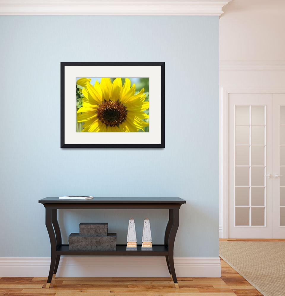 """Christmas Gift Gallery Sun Flower Art Gifts&quot  (2009) by BasleeTroutman"