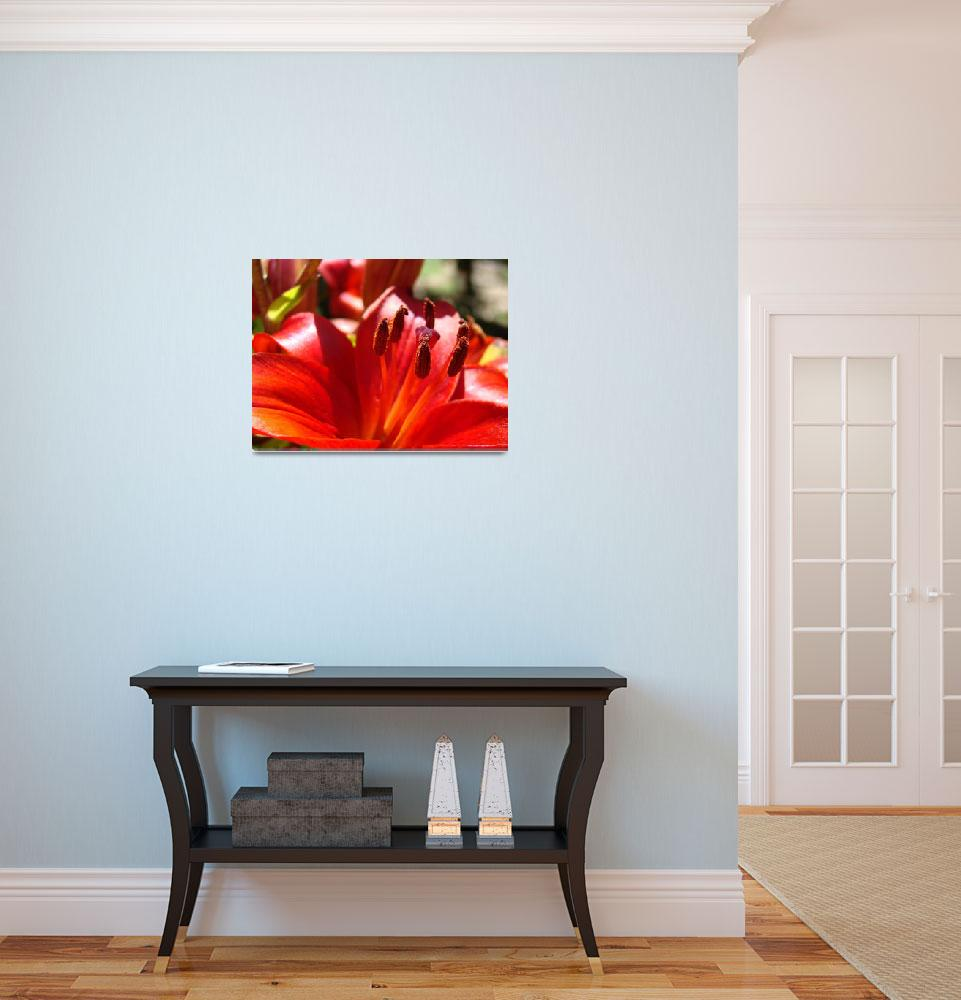 """Red Lily Flower art print Lilies Floral Baslee Tro&quot  (2010) by BasleeTroutman"