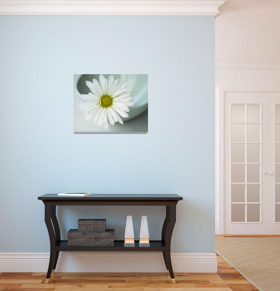 """White Daisy in a mint green bowl&quot  (2014) by JesusIsMySavior"