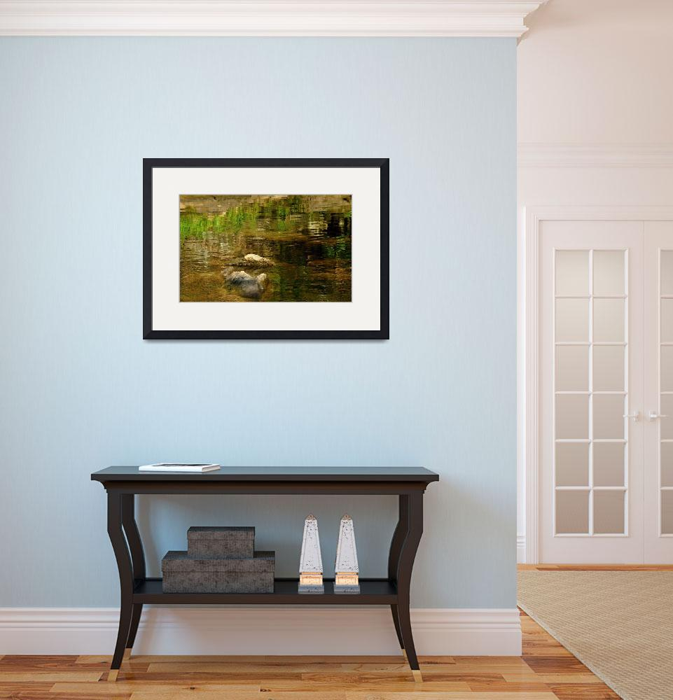 """Sheepscot River Reflections&quot  (2012) by bavosiphotoart"