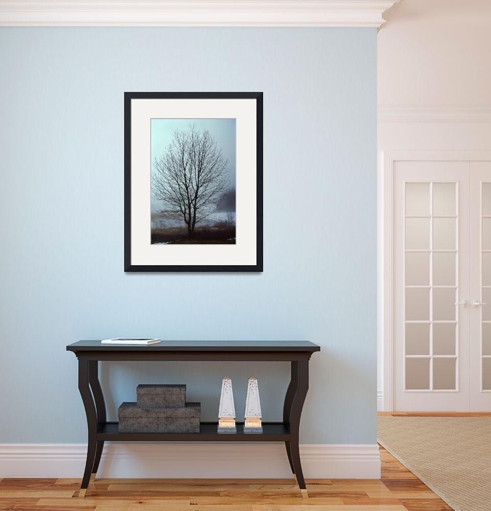 """Solitary Maple in Winter&quot  (2011) by AppleCoreStudio"