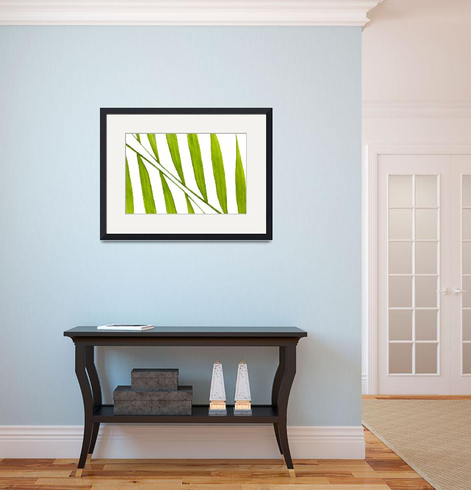 """Contemporary Leaf Design 2&quot  (2014) by NatalieKinnear"