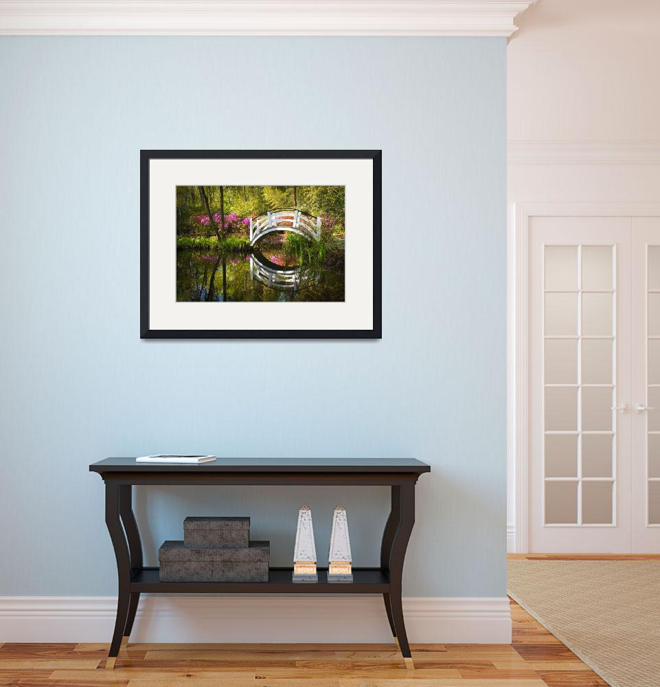 """Charleston SC Magnolia Plantation Spring Blooming&quot  (2012) by DAPhoto"