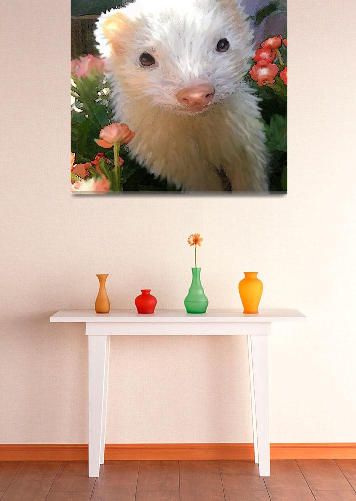 """white ferret&quot  (2009) by pietrastone"