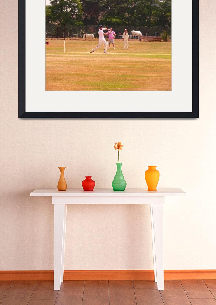 """Cricket&quot  (2009) by romarkimages"