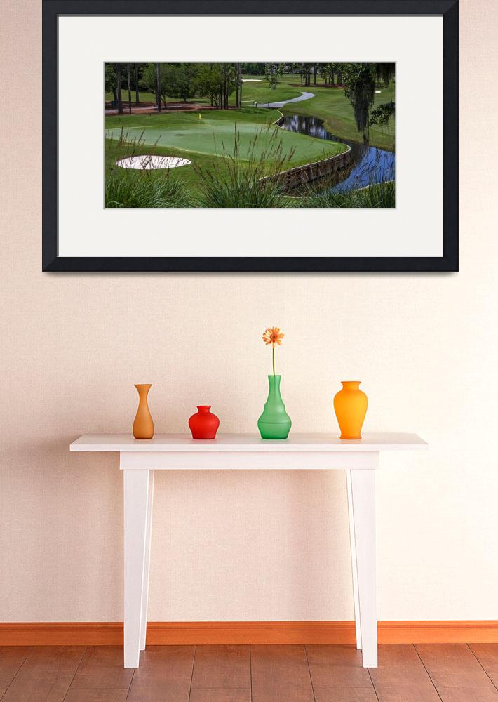 """TPC Sawgrass Golf Course Hole 4 Photo 2 Wide&quot  (2013) by Richimage"