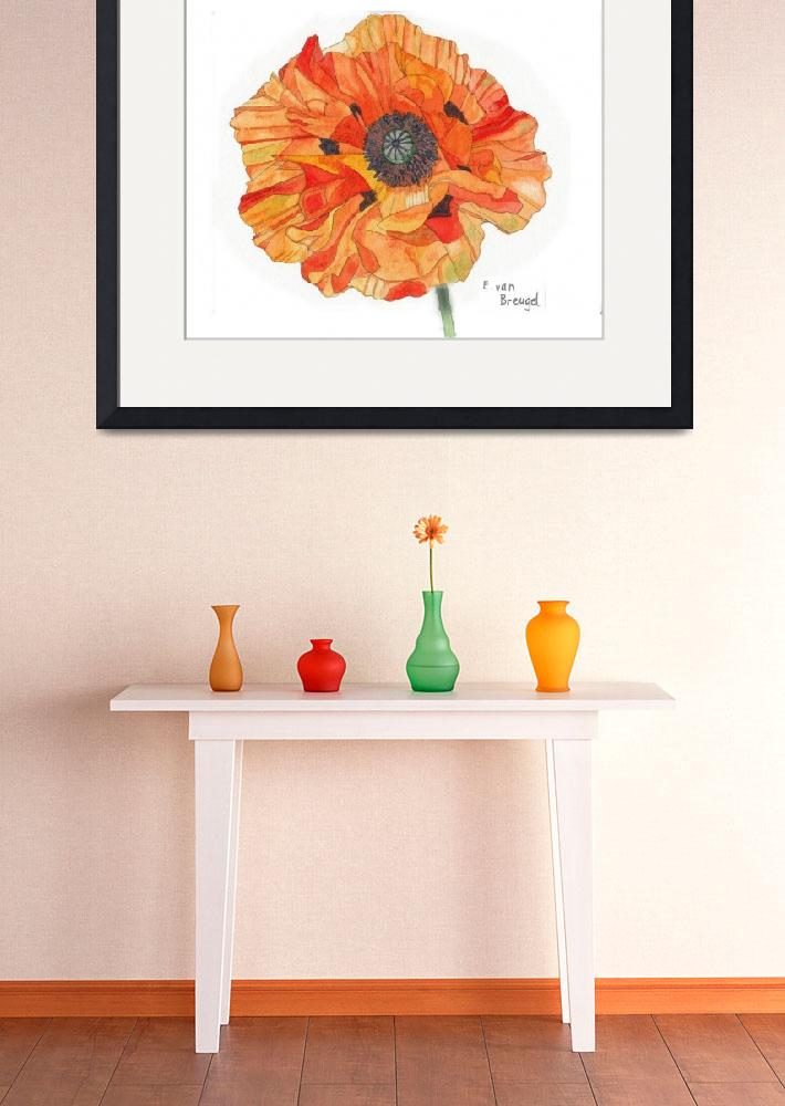 """Single Orange Poppy&quot  (2012) by esvb"