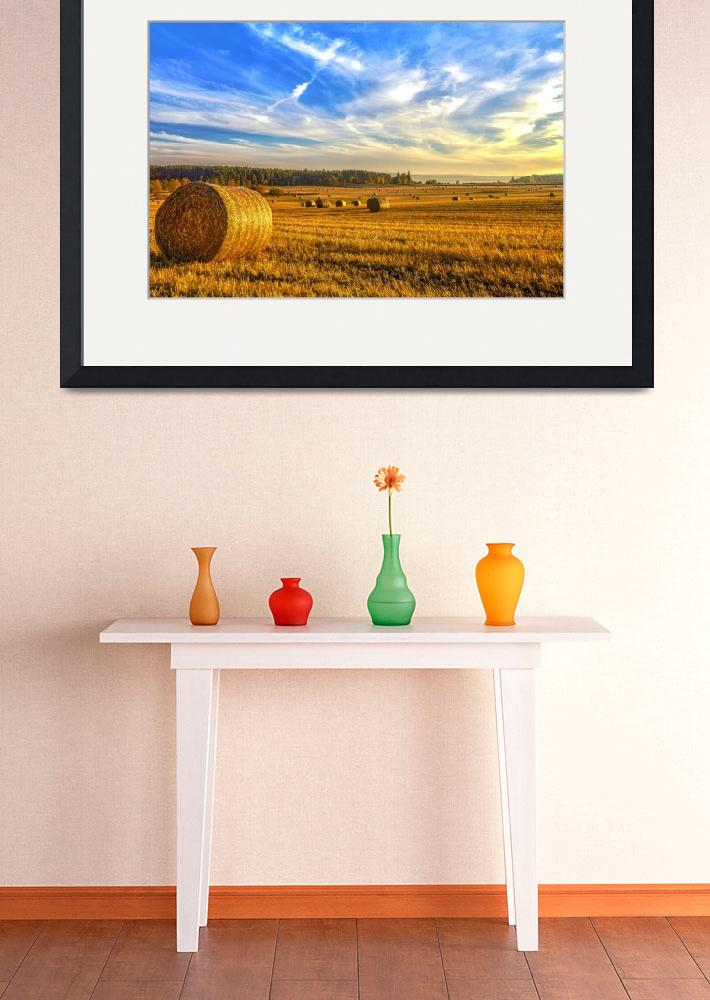 """Halcyon Harvest Days&quot  (2012) by derekbeattieimages"