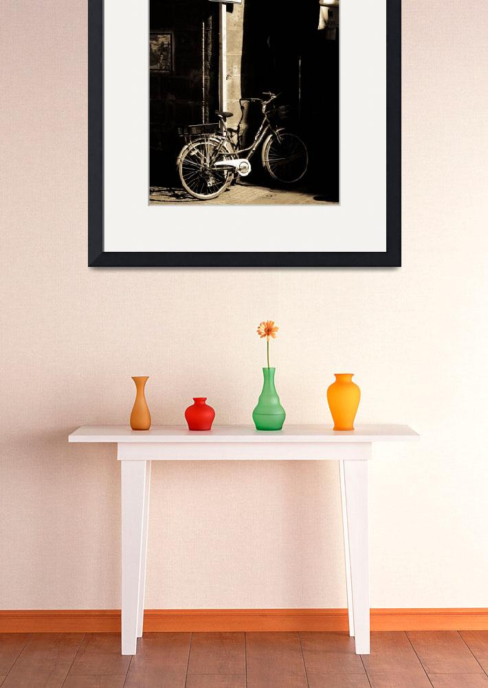 """Bicycle&quot  (2010) by doneric"