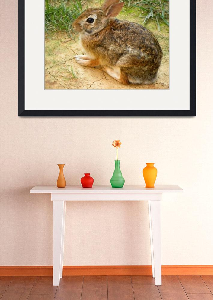 """Rabbit Visit&quot  (2011) by SandiOReilly"