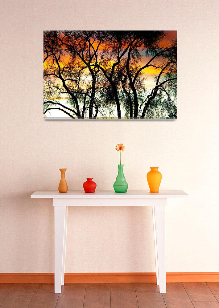 """Colorful Silhouetted Trees 10&quot  (2012) by lightningman"