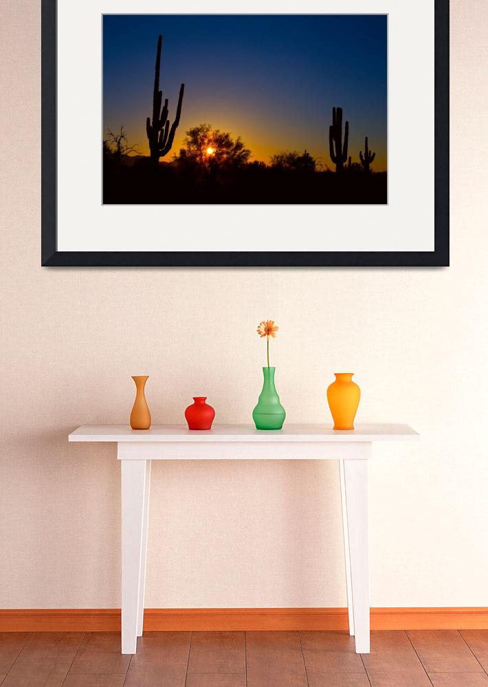 """Just Another Sonoran Desert Sunrise&quot  (2014) by lightningman"