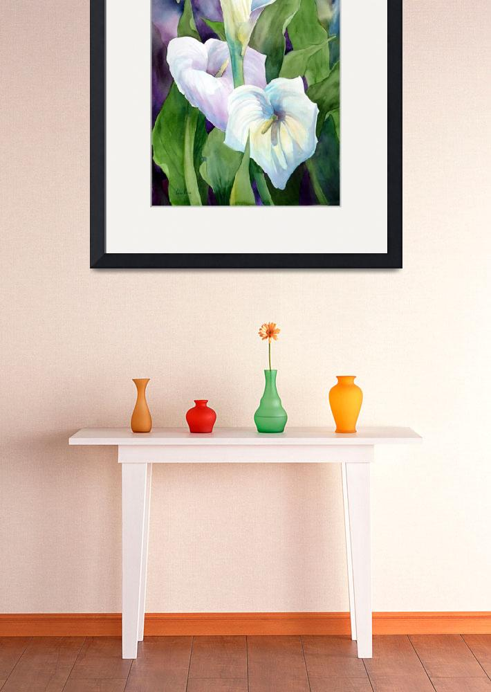 """Cala Lily I&quot  (2009) by MarniMaree"