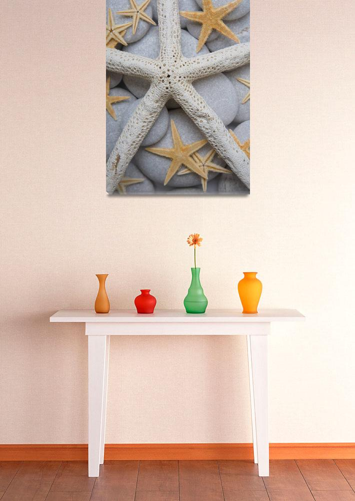 """Starfish on Pebbles&quot  (2010) by Spanishalex"