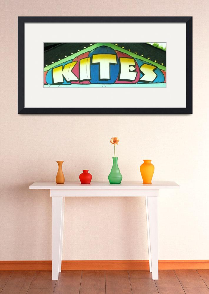 """KITES&quot  (2007) by SharonANelson"